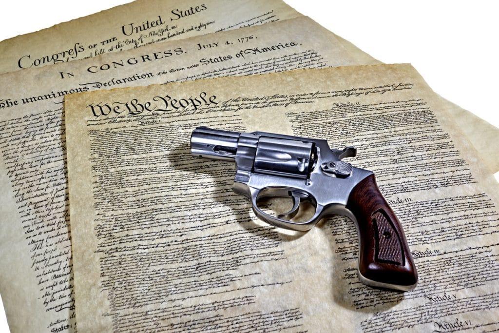 Federal Gun Crimes