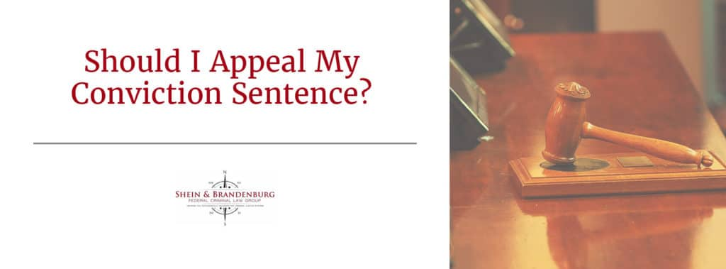 Appeal Conviction Sentence