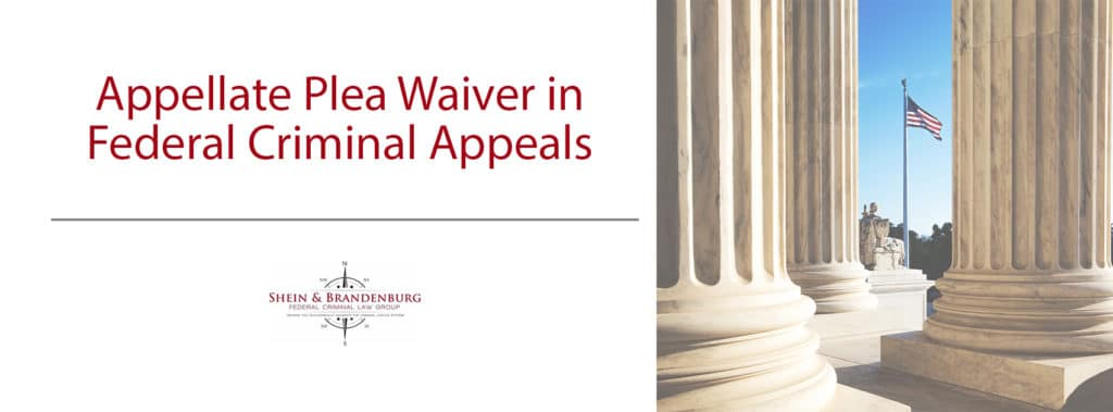 Appellate Plea Waiver Claims in Federal Criminal Appeals